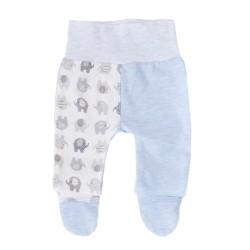 Półśpiochy niemowlęce słoniki błękitne